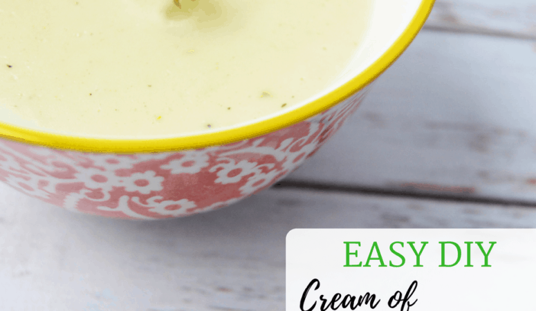Easy DIY Cream of Chicken Soup