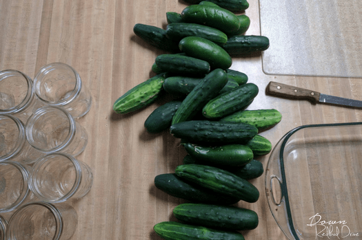 Easy Beginner Refrigerator Pickles