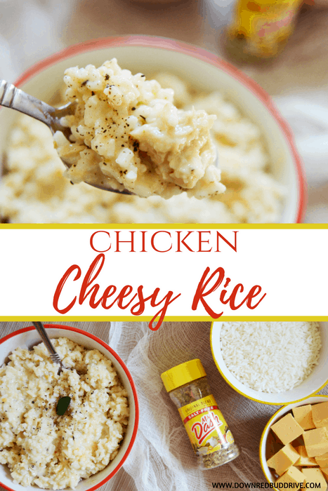 Making Chicken And Rice For Cats