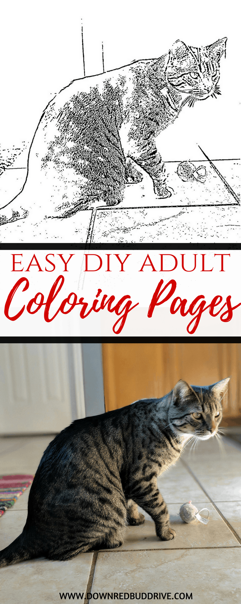 Easy DIY Adult Coloring Pages   Adult Coloring Pages   Printable Coloring Pages   Coloring Pages Free   DIY Coloring Pages   Coloring Pages   #adultcoloringpages #diycoloringpages
