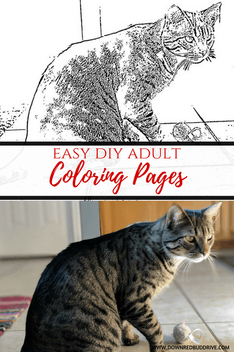 Easy DIY Adult Coloring Pages