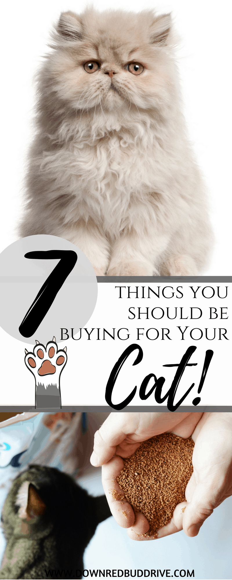 7 Things You Should Be Buying for Your Cat | Cat Items | Cat Care | Cat Lovers | Cat Must Haves | Best Cat Items | Best Cat Box | Best Cat Toys | Cat Toys | Down Redbud Drive #ad #LitterMaidWalnut #LitterMaid #catlovers #catfood