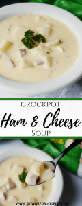 Crockpot Ham and Cheese Soup