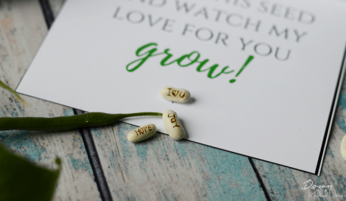 Personalized Seeds