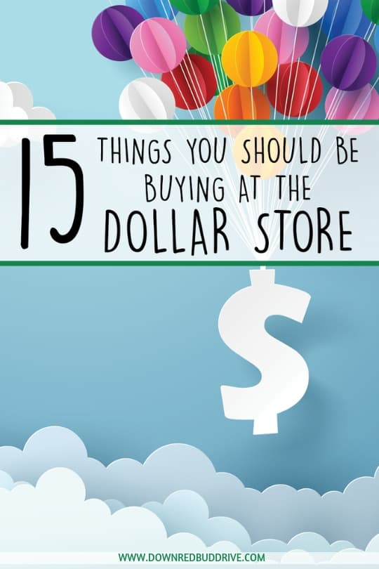 15 Things You Should Be Buying At The Dollar Store