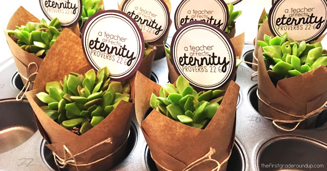 Succulents & Scripture