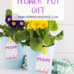 mother's day flower pot gift