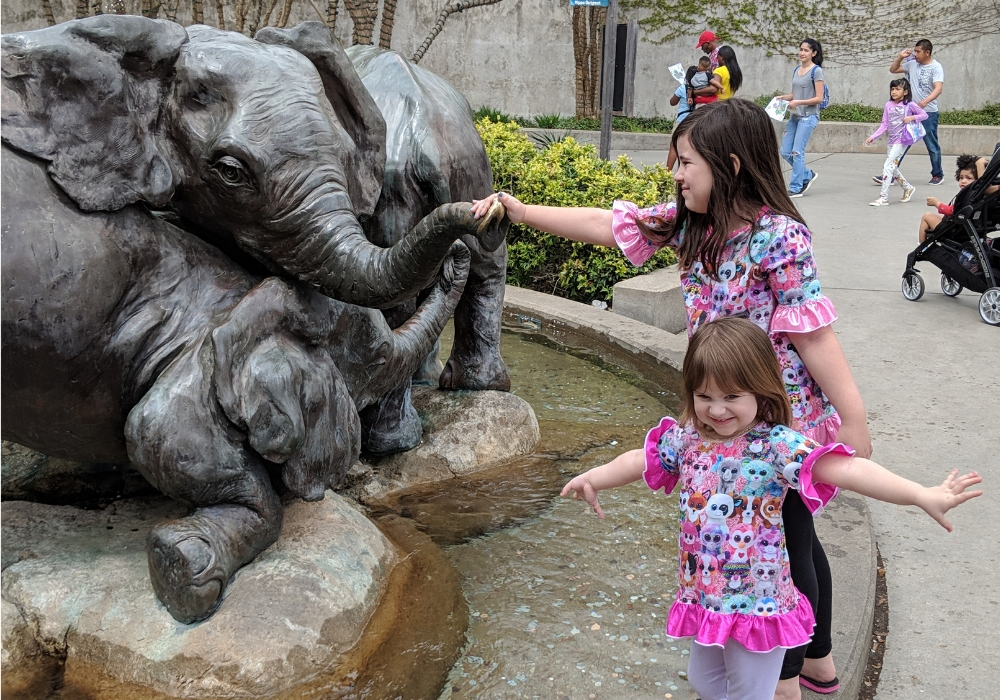 kids playing at the dallas zoo