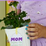 Mother's Day Flower Pot pinterest image