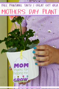 Mother's Day Flower Pot pinterest image