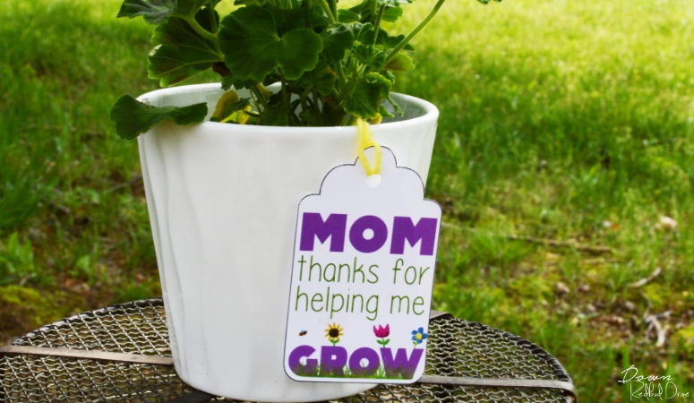 Mother's Day Flower Pot featured image