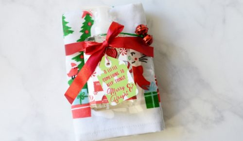 merry and bright gift idea