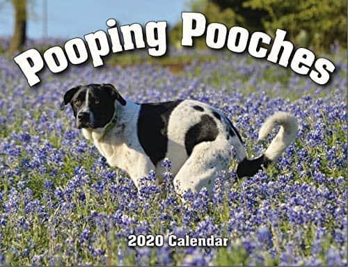 2020 Pooping Pooches Calendar