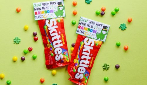 rainbow seeds skittles on a green background surrounded by loose Skittles