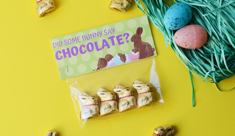 Did Some Bunny Say Chocolate Gift Idea