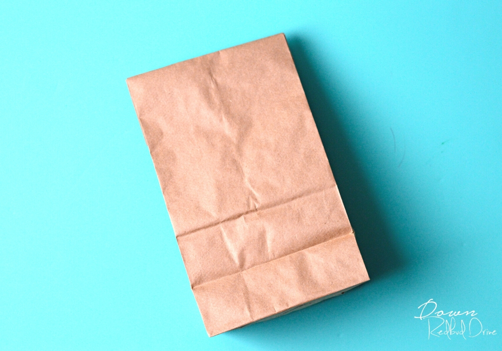 brown paper sack on an aqua colored background