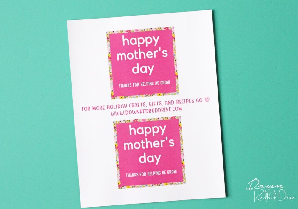 mother's day bulbs printable tags