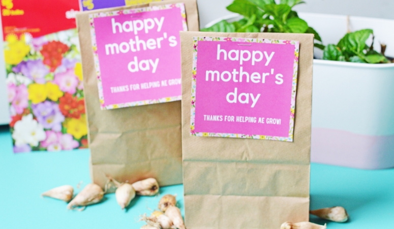 Mother's Day Flowering Bulb Gift