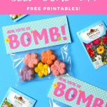 Mother's Day DIY Seed Bombs