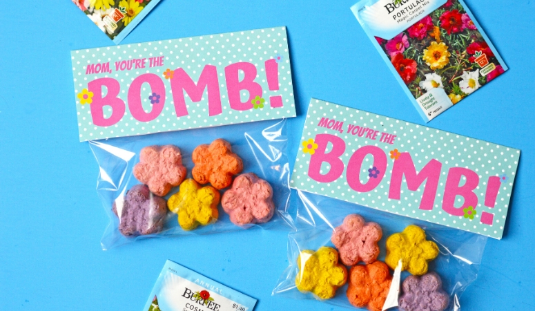 Mother's Day DIY Seed Bombs Gift