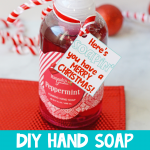 Christmas Hand Soap Gift DIY