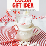 DIY Hot Cocoa Gift Idea