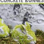 DIY Concrete Bunnies