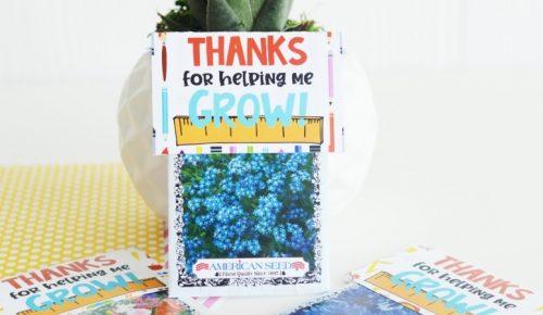 Teacher Seeds Gift Featured Image