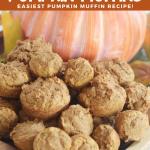 3 Ingredient Pumpkin Muffins